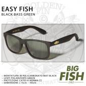 BIG FISH EASY FISH